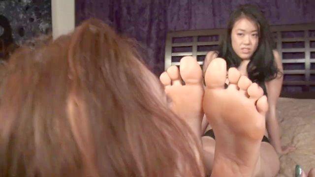 potes grandes solas asiáticos adoram