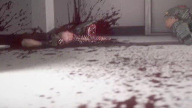 女忍2:秋天的红叶(kunoichi 2∶ Fall Of The Shrinemaiden)
